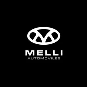 logo Talleres MELLI