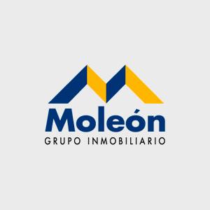 logo Grupo Inmobiliario Moleón