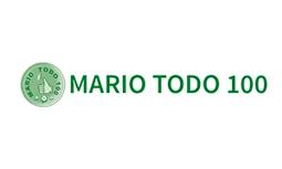 logo MARIO TODO 100
