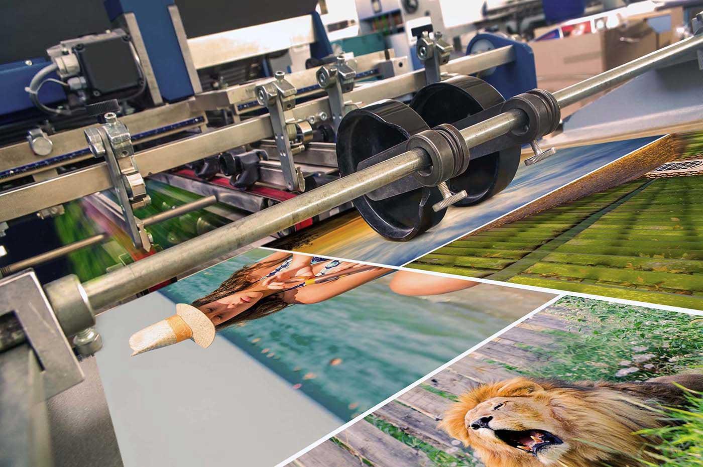erp artes graficas imprentas